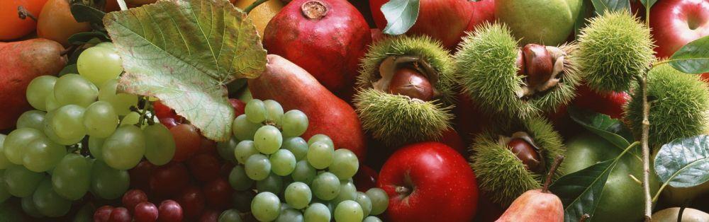 Wine food tasting culinary tradition Veneto region