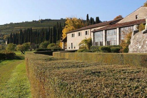 Villa Alighieri Valpolicella