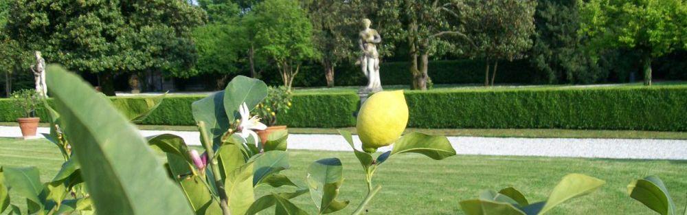 Parc villa Emo de Palladio, Culture et loisirs en Vénétie
