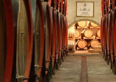 Roncade castle cellar Piave wine