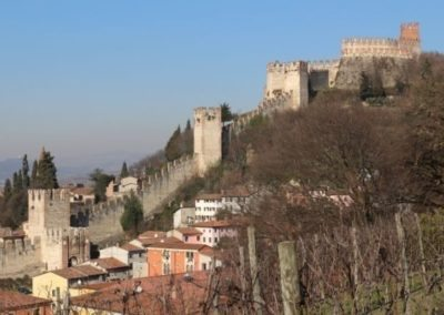 Soave wine region