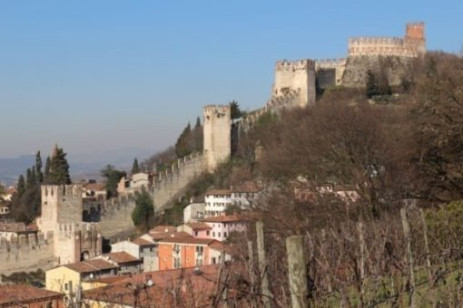 Soave wine region
