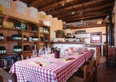 Wine and food tasting Euganean hill