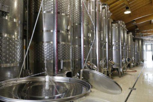 Cellar in the Valdobbiadene area