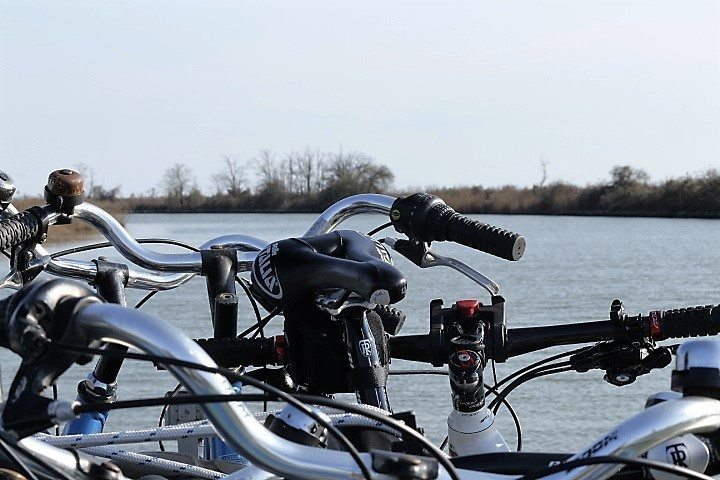 Bicycles venetian lagoon cycle routes guided day excursion
