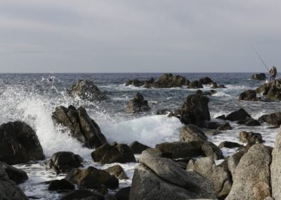 Fishing Tyrrhenian coast Calabria